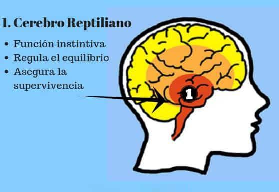 Sistema reptiliano